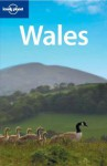 Wales - David Atkinson, Neil Wilson, Lonely Planet