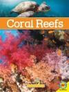 Coral Reefs - Simon Rose