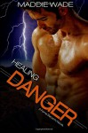 Healing Danger: Fortis Security (Volume 1) - Maddie Wade