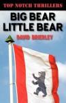 Big Bear, Little Bear - David Brierley
