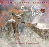 First Snow in the Woods: A Photographic Fantasy - Carl R. Sams II, Jean Stoick