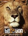 Big Cat Diary: Lion - Jonathan Scott, Angie Scott