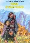Tomek w Gran Chaco - Alfred Szklarski