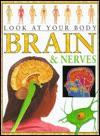 Brain and Nerves - Steve Parker, Ian Thompson