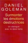 Surmonter Les Émotions Destructrices: Un Dialogue Avec Le Dalaï Lama - Daniel Goleman, Dalai Lama XIV, Matthieu Ricard, Anatole Muchnik