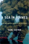 A Sea in Flames: The Deepwater Horizon Oil Blowout - Carl Safina