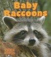 Baby Raccoons - Bobbie Kalman