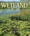 Wetland - Sheila Rivera