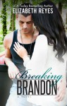 Breaking Brandon - Elizabeth Reyes