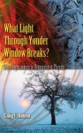 What Light Through Yonder Window Breaks?: More Experiements in Atmospheric Physics - Craig F. Bohren
