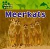 Meerkats - Justine Ciovacco
