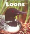 Loons - Patrick Merrick