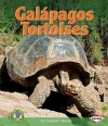 Galapagos Tortoises - Conrad J. Storad