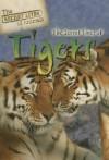 The Secret Lives of Tigers - Julia Barnes