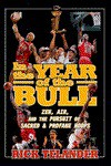 In the Year of the Bull: Zen, Air, and the Pursuit of Sacred and Profane Hoops - Rick Telander