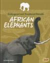 African Elephants - Brenda Haugen