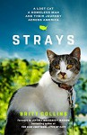 Strays - Britt Collins