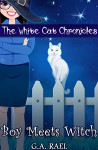 Boy Meets Witch (The White Cat Chronicles Book 1) - G.A. Rael