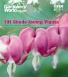 101 Shade-Loving Plants: Ideas to Lighten Shadows - James Wickham