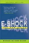 E-Shock: The New Rules--Internet Strategies for Retailers and Manufacturers - Michael De Kare-Silver