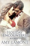 Holiday Encounters: Books 1-3 - Amy Lamont