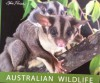 Australian Wildlife Unique and Unusual - Steve Parish, Karin Cox