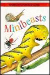 Mini Beasts - Philippa Moyle, Louise Morley