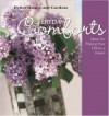 Everyday Comforts: Decorating Ideas for Making Your Home a Haven (Better Homes and Gardens) - Vicki L. Ingham