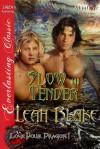 Slow and Tender - Leah Blake