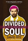 Divided Soul: The Life of Marvin Gaye - David Ritz, Dion Graham