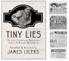 Tiny Lies - James Lileks