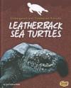 Leatherback Sea Turtles (Snap) - Jody Sullivan Rake