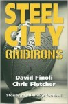Steel City Gridirons: Stories of All Things Football from the High Schools, the Colleges, the Pros, and the Earliest Days of the Game - David Finoli, Chris Fletcher