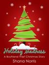 Holiday Madness: A Boyfriend Thief Christmas Story - Shana Norris