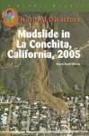 Mudslide in La Conchita, California, 2005 - Karen Bush Gibson