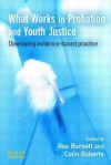 What Works in Probation and Youth Justice: Developing Evidence-Based Practice - Ros Burnett, Colin Roberts