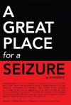 A Great Place for a Seizure - Terry Tracy