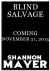 Blind Salvage - Shannon Mayer