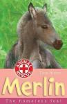 Merlin: The Homeless Foal - Tina Nolan