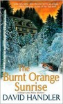 The Burnt Orange Sunrise: A Berger and Mitry Mystery - David Handler