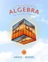 Intermediate Algebra for College Students (8th Edition) (The Angel Developmental Algebra Series) - Allen Angel, Dennis Runde