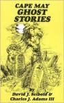 Cape May Ghost Stories: Book 1 - David J. Seibold, Charles J. Adams III