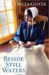 Beside Still Waters: A Big Sky Novel - Tricia Goyer