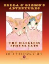 Bella and Gizmo's Adventures - The Hairless Sphynx Cats - Jodi Pliszka