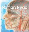 The Human Head - Kathy Allen, Jenny Krueger