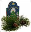 Christmas Lights (Night Glow Board Books) - Judith Moffatt