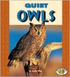 Quiet Owls (Pull Ahead Books) - Joelle Riley
