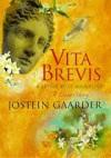 Vita Brevis: A Letter To St Augustine: A Love Story - Jostein Gaarder