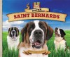 Super Saint Bernards - Mary Elizabeth Salzmann