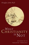 What Christianity Is Not: An Exercise in Negative Theology - Douglas John Hall